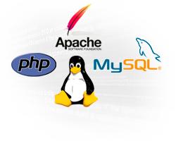 Desarrollo web avanzado, programacion, desarrollo programacion